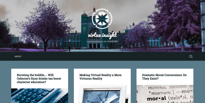Virtue Insight blog screenshot
